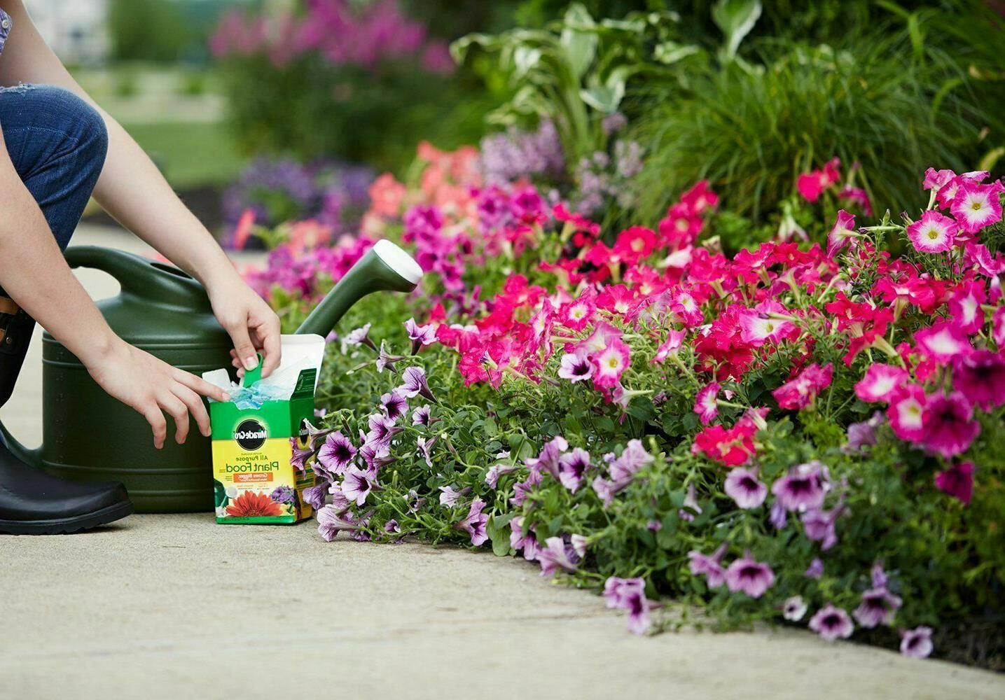 Miracle-Gro OZ Water Soluble All Plant Food Flowers