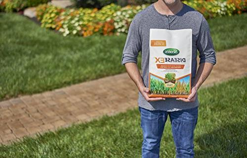 Scotts 10 Disease Prevention and for Patch, Stripe Rust, Thread, More