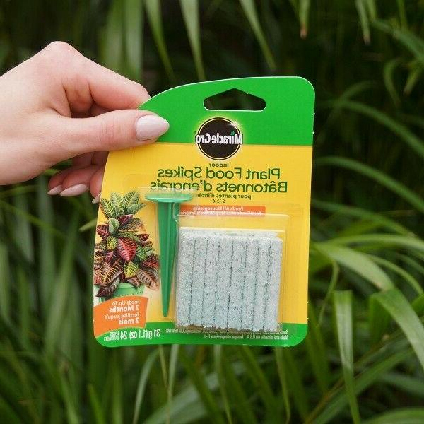 Plant Spikes Outdoor Food Herbs Root