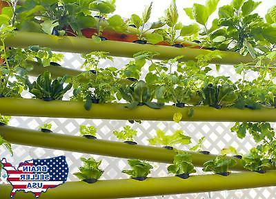 Lettuce Hydroponic Nutrition, New