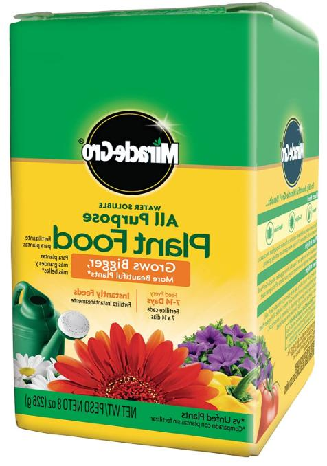 miracle gro grow flowers plant food fertilizer