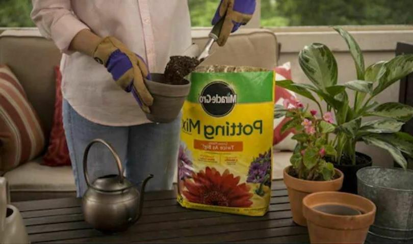 Miracle Potting Soil Quart, 6 Months, Containers