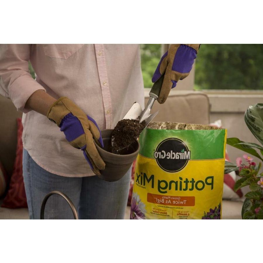 Miracle Gro Potting Soil 8 Quart, Feeds 6 Containers