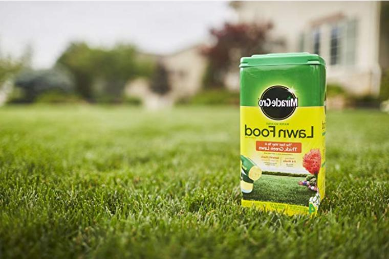 Miracle-Gro Water Soluble Lawn Food - lbs FREE2DAYSHIP
