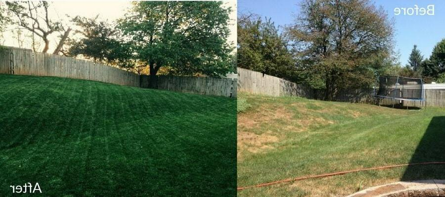MILORGANITE for Lawn Grass and Slow Release!