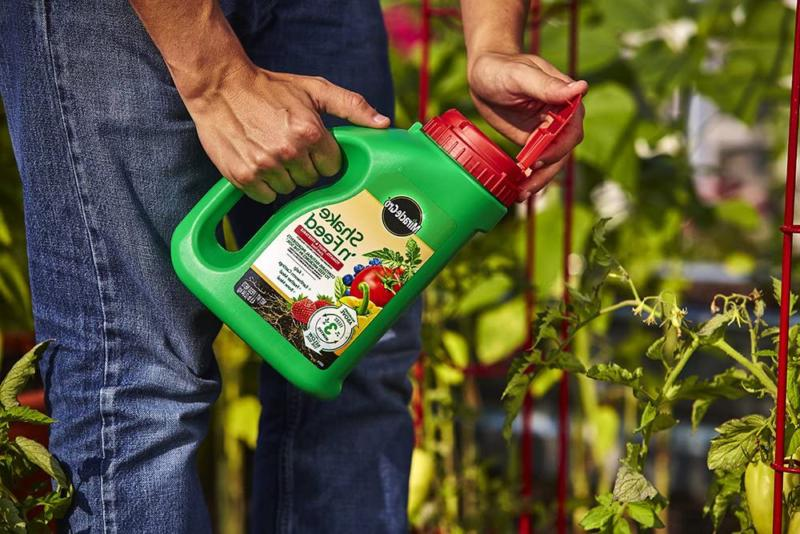 Plant Food Miracle-Gro Fruit Vegetable Release 4.5 Lb