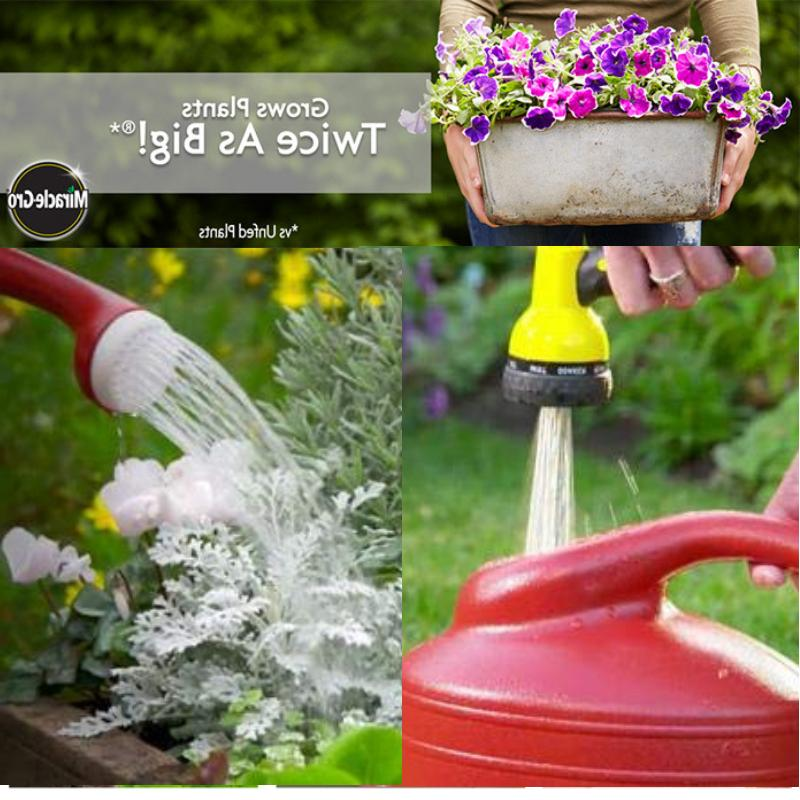 Miracle Water All Purpose Plant Flower Vegetable